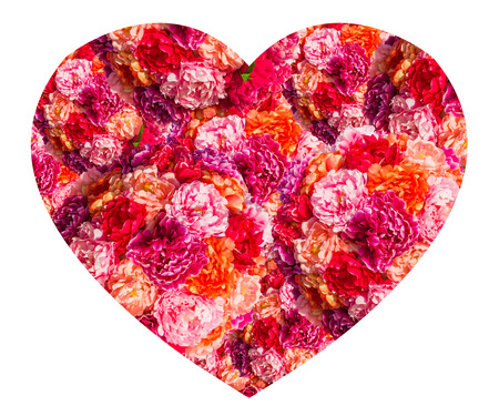 pink roses Heart form isolated on white background photo