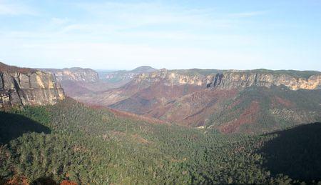 bushfire: Blue mountains after major bushfire. Near Blackheath. Govetts Leap. Australia. Stock Photo