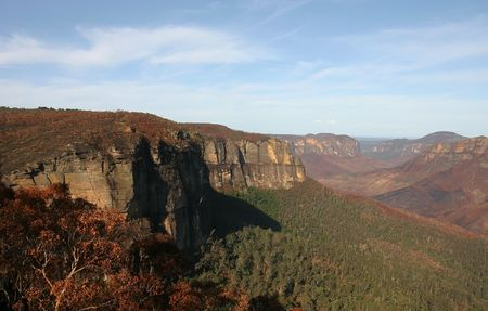 Blue mountains after major bushfire. Near Blackheath. Govetts Leap. Australia. photo