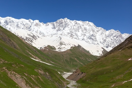 Alpine meadows at the foot of Mt. Shkhara. Ushguli Village. Upper Svaneti. Georgia. Stock Photo - 9059807