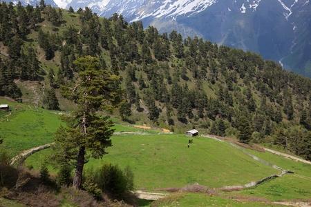 Mountains landscape near Mestia village. Upper Svaneti. Georgia. Stock Photo - 9535575