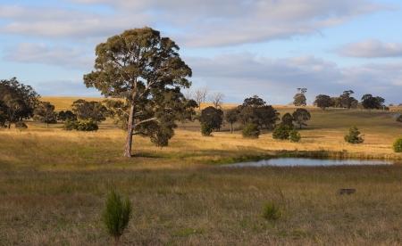 New South Wales Landschaft New South Wales Australien