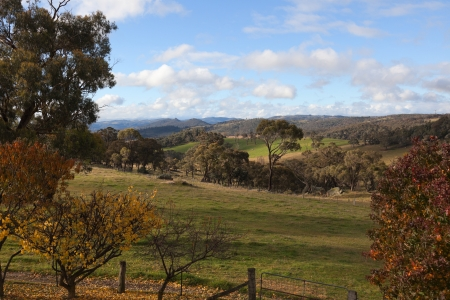 Autumn colours in countryside tablelands near Oberon  NSW  Australia  photo