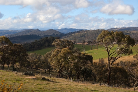 A rural landscape near Oberon  New South Wales  Australia  photo