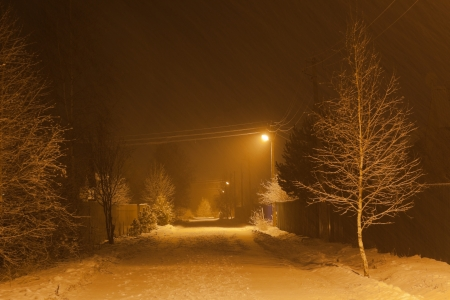 Heavy snowfall at night  Moscow Region  Russia   photo