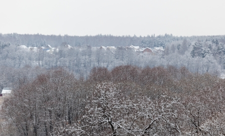 Forest and holiday village in distance after heavy snowfall  Moscow region  Russia  photo