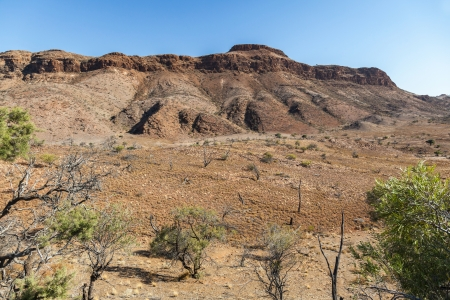 flinders: Flinders Ranges landscape. South Australia.
