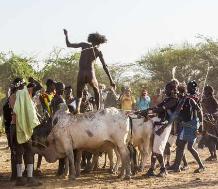 TURMI, OMO VALLEY, ETHIOPIA - DECEMBER 30, 2013: Unidentified young man jumps of the bulls.  Bull Jumping ceremony is a rite of passage into manhood in some Omo Valley tribes.