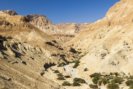 kibbutz: View from Ein Gedi kibbutz. Near Dead Sea, Israel Stock Photo