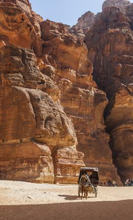 treasury: PETRA, JORDAN - OCTOBER 29, 2014: Unidentified local coachman in horse cart near Al Khazneh (The Treasury).