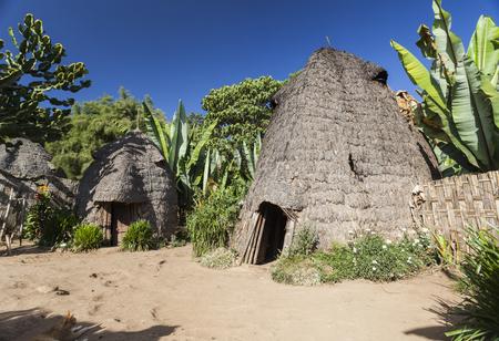 Cabeza de elefante como casas Dorze tradicionales. Pueblo de Hayzo, Valle de Omo, Etiopía