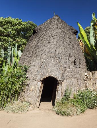 Elephant head like traditional Dorze house. Hayzo village, Omo Valley, Ethiopia