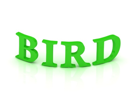 BIRD sign with green letters on isolated white background photo