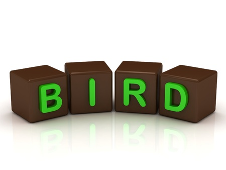 BIRD inscription bright green letters on the cubes of chocolate isolated on white background Stock Photo - 14687646