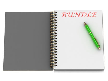 BUNDLE word on notebook page and the gold-green pen. 3D illustration on white background illustration