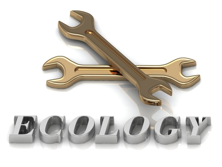 metal letters: ECOLOGY- inscription of metal letters and 2 keys on white background