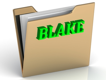 blake and white: BLAKE- Name and Family bright letters on gold folder on a white background