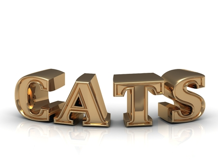 lion and lamb: CATS - inscription of bright gold letters on white background Stock Photo