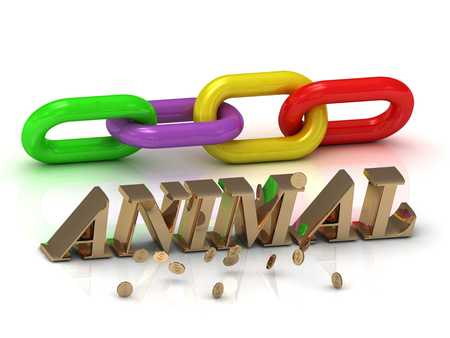 lion and lamb: ANIMAL- inscription of bright letters and chain on white background Stock Photo