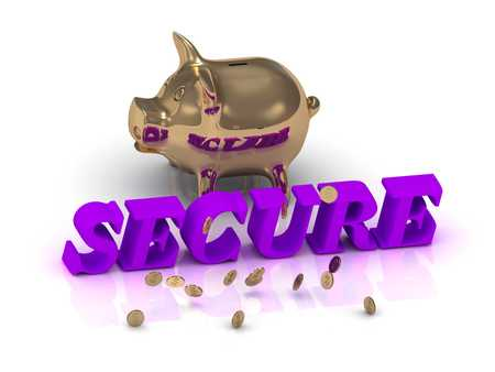 secret identities: SECURE- inscription of green letters and gold Piggy on white background