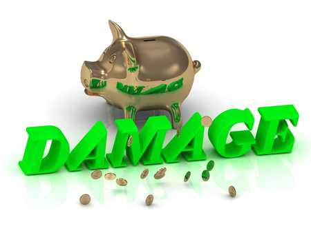 ruined house: DAMAGE- inscription of green letters and gold Piggy on white background