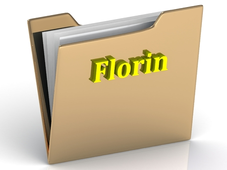 florin: Florin- bright color letters on a gold folder on a white background