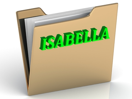 ISABELLA- bright green letters on gold paperwork folder on a white background Stock Photo