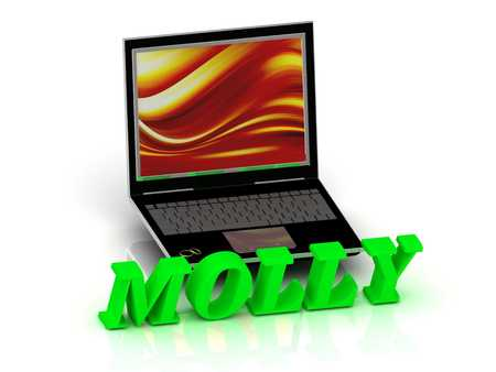 molly: MOLLY- Name and Family bright letters near Notebook and  inscription Dating on a white background