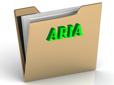 aria: ARIA- bright green letters on gold paperwork folder on a white background
