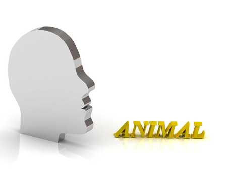 lion and lamb: ANIMAL bright color letters and silver head mind on a white background