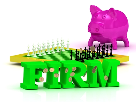 firm: FIRM bright word, money, pink piggy, yellow chess on white background
