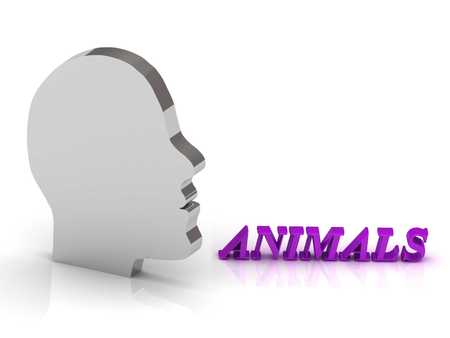ANIMALS  bright color letters and silver head mind on a white background