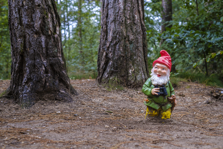 small garden gnome with beard and red pointed hat and binoculars stands alone in the forest
