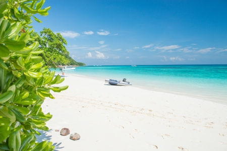 Beautiful Sea  White sand and Boat photo
