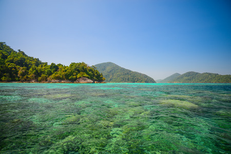 surin: Snorkeling point with beautiful coralscape at Surin national park ,khao lak,Phang-nga, Thailand (Unkown People)