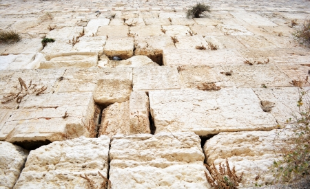 The Western Wall in Jerusalem photo