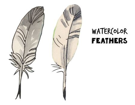 Watercolor feather set illustration.Writing tool. Hand drawn illustration.