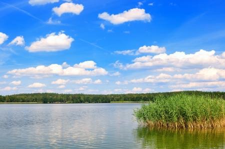 canne: Lago di Lago in Mazury in Polonia