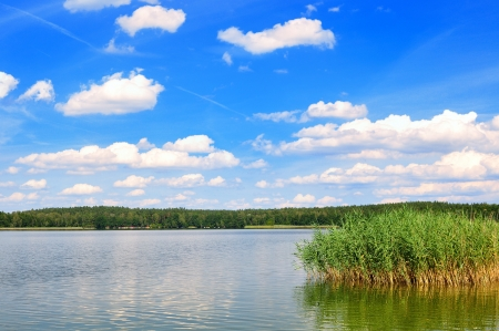 Lake   Lake in Mazury in Poland  Stock Photo - 15488598