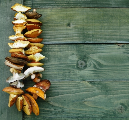 fungaceous: Dried mushrooms on a string