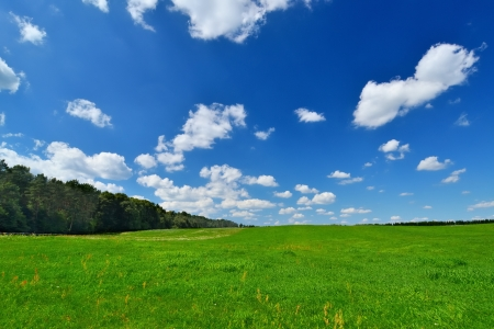Country landscape with beautiful sky  photo