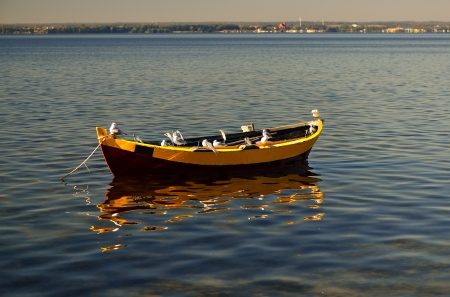 danmark: Empty boat with seagulls