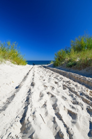 Beautiful quiet beach on the Baltic Sea  photo