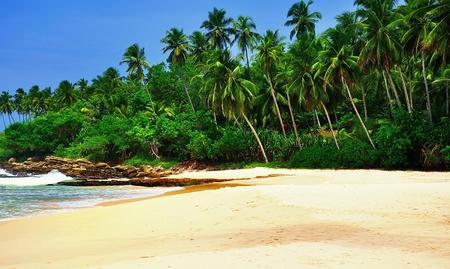 Beach on Sri Lanka photo