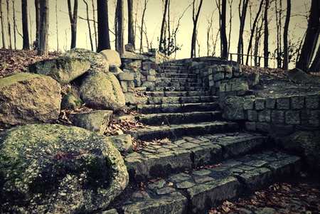Old rock stairs in forest. photo