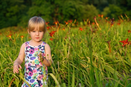 playing field: Little girl on the meadow of flowers. Stock Photo