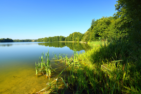 Lake with forest on the coastline. Stock Photo