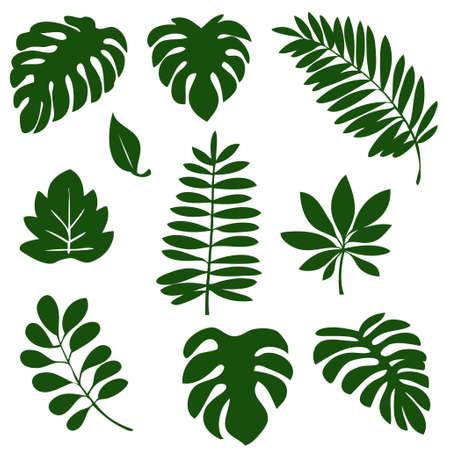 Tropical leaf material illustration set  イラスト・ベクター素材