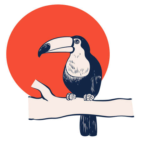Toucan illustration that stopped in a tree