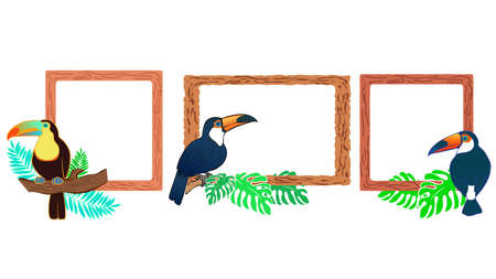 Toucan Illustration Frame Set  イラスト・ベクター素材